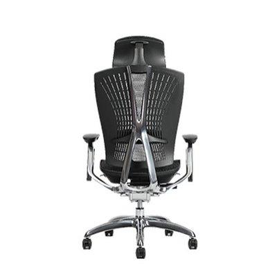 【BNS居家生活館】台灣製BACKBONE -頂級時尚台灣製whale-高彈性網布-旗艦椅/辦公椅/椅子