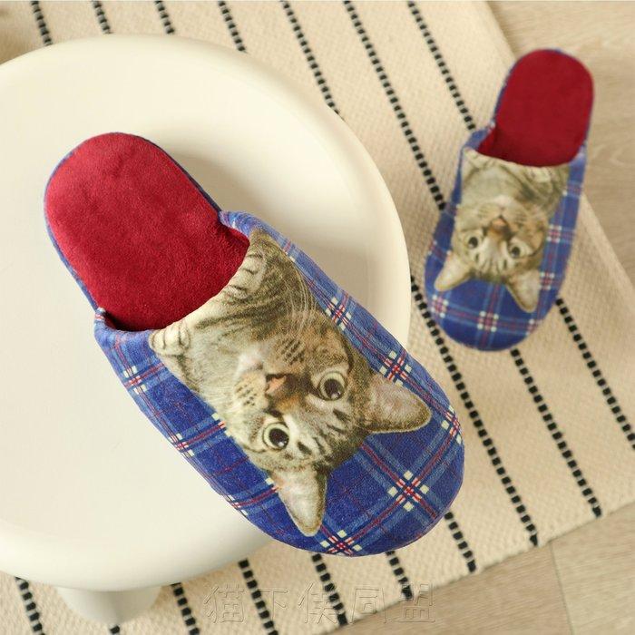 【貓下僕同盟】日本貓咪雜貨 可愛居家室內拖 止滑拖鞋 家居拖鞋 室內居家鞋 灰虎斑貓 柔軟舒適