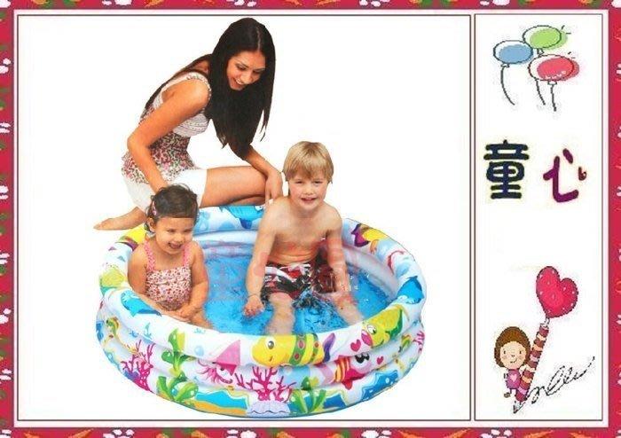 親親系列jilong-海洋世界三環泳池 91x25公分~不含球賣場~◎童心玩具1館◎