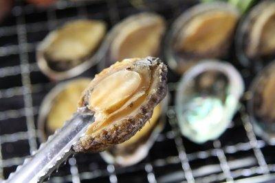 【中秋烤肉食材】帶殼鮑魚(又稱九孔鮑/盤鮑)(30顆 /1000g)/1顆 ~來點新鮮的烤帶殼鮑魚~味道鮮美~細嫩可口~