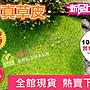 【藍總監】仿真假草皮 15*15cm  拍攝用草皮...