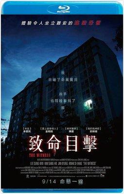 【藍光電影】致命目擊 / 目擊者 / 목격자 (2018)