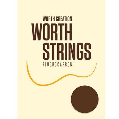 日本 Worth BE CE 烏克麗麗套弦 21吋 23吋適用 可裝兩把琴 日本製造
