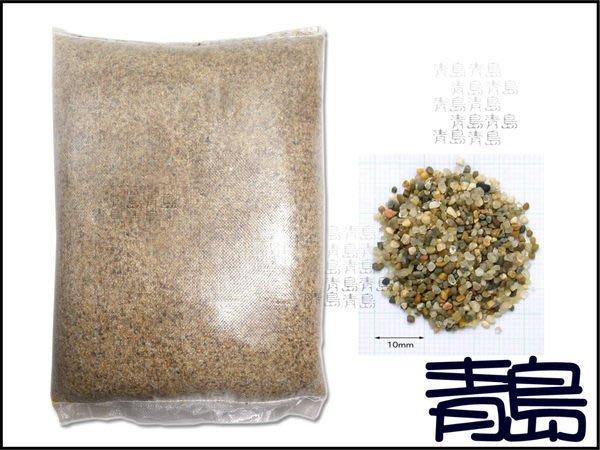MM。。。青島水族。。。美國細砂.美細 矽 砂(一般)==10號1kg(散裝)