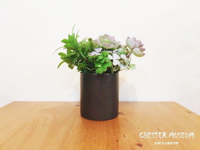 【現貨】萊昂內爾 仿真花 塑膠花 仿真植物 塑膠植物 永生花 假花 假植物
