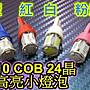 晶站 高亮度 T10 COB 晶體 24晶 小燈 牌照燈...