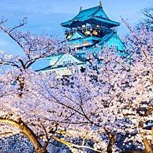 現代裝飾畫日本大阪熊本青森海報古城池牆松本城客廳玄關