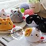 【愛莉絲小舖】日本靴下貓豆沙貓一組六入(現貨) 可愛卡通貓咪喵星人沙包毛絨公仔玩偶玩具