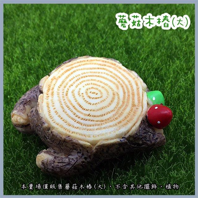 台北►►多彩水族◄◄嚴選《蘑菇木樁  / 大》水族 魚缸 鄉村 田園 造景及桌上擺飾 多肉 微景觀