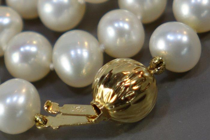 1950s 法國750(18k)黃金天然珍珠項鏈
