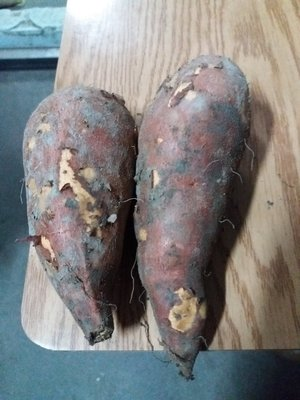 水林新鮮台農66號紅肉地瓜大條,10斤250元