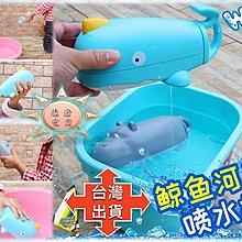 [現貨在台 台灣出貨]大號水槍 鯨魚水槍 河馬水槍 夏季兒童沙灘游泳池浴室洗澡戲水玩具 兒童沐浴洗澡 浴室洗澡玩具