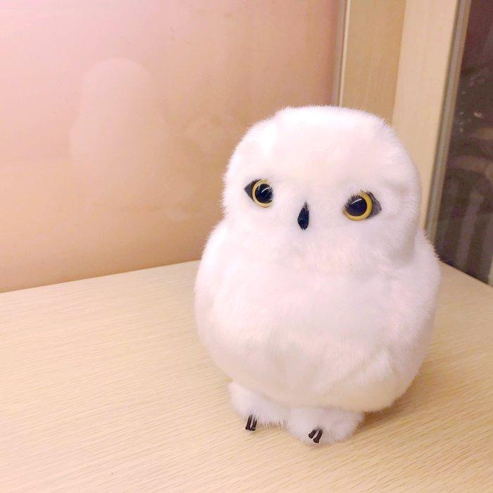 日本雪白貓頭鷹娃娃,店內最熱銷款~最特別的禮物都在奧爾思~