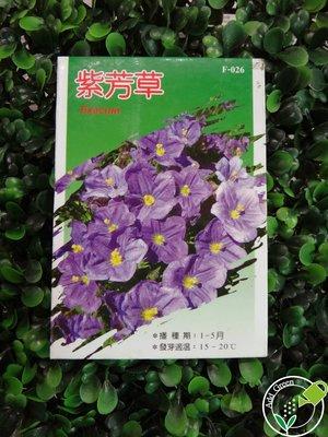【加點綠】蔬果_花卉系列- 紫芳草 ( 單包 ) /花卉/觀賞/芳香植物種子