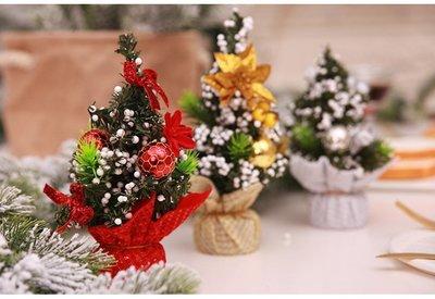 20公分可愛小聖誕樹60元