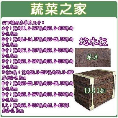 全館滿799免運【蔬菜之家001-A109】6吋蛇木板10片/捆(.保水性通氣性極佳.蘭科類用)