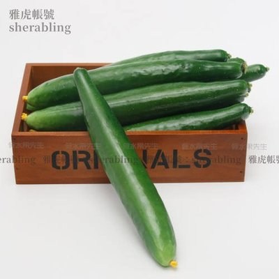 (MOLD-A_202)仿真蔬菜瓜果假水果模型家居飾品櫥柜飯店擺設攝影道具仿真長青瓜