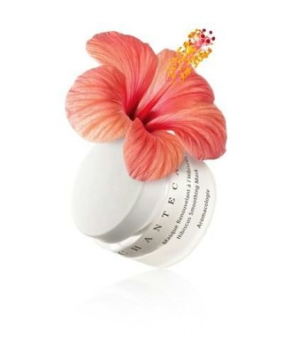 chantecaille hibiscus smoothing mask50ml