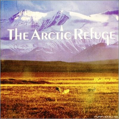 音樂居士*馬修連恩 Matthew Lien - The Arctic Refuge 北極*CD專輯