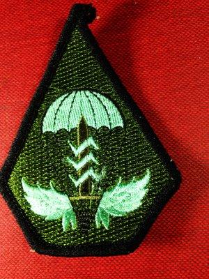 【布章。臂章】空軍傘兵徽章/布章 電繡 貼布 臂章 刺繡-2