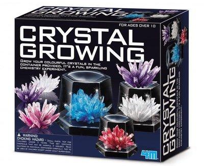 神奇水晶體豪華組Crystal Growing Experimental Kit 在家輕鬆養殖水晶體 珊瑚礁 礦物結晶