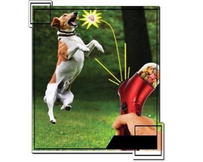 (1312-A)猫狗餵食器/寵物食物彈射器/PET TREAT LAUNCHER/毛小孩餵食食物槍-edoor99
