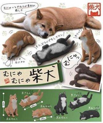 【一手動漫】日本正版 轉蛋SYSTEM SERVICE 軟Q柴犬 全6款