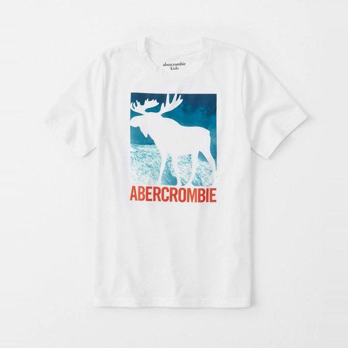 【abercrombie kids】【a&f】af男童款短袖T恤印海灘白大鹿白 F07190717-14