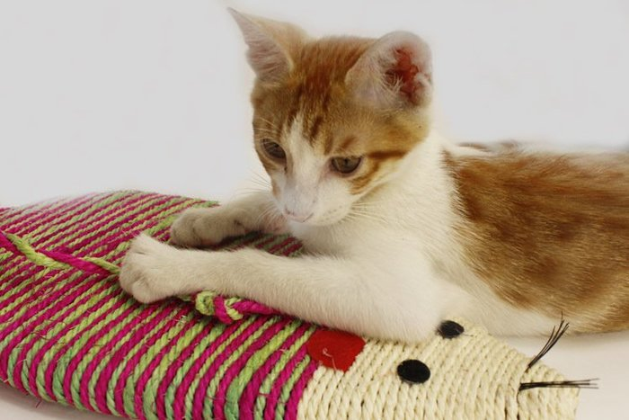 =寵喵百貨= 編織麻繩彩色老鼠貓抓板(大號) 老鼠型磨爪板 可掛式劍麻貓抓板 劍麻鼠大號 磨爪玩具