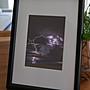 聚鯨Cetacea﹡Art【KLFZ- 0741】lightning閃...