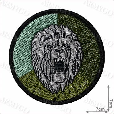 【ARMYGO】269旅 部隊臂章