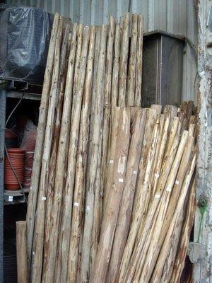 【路卡傢飾~園藝造景】庭園樹木 支架 木樁 庭園 花樹 圍籬 支撐柱 支撐架 原木柱