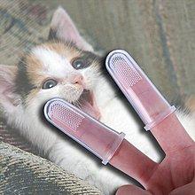 現貨 硅膠指套 貓 狗 牙齒 除口臭 幼兒 牙刷 寵物 指套刷 手指 ❃彩虹小舖❃【E003】 寵物 矽膠 指套 牙刷