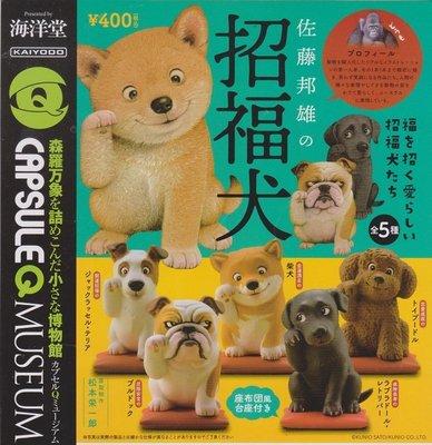 【奇蹟@蛋】 海洋堂 (轉蛋)佐藤邦雄的招財犬 全5種整套販售  NO:5489