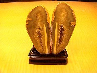 烏魚仔造型水晶聚寶盆