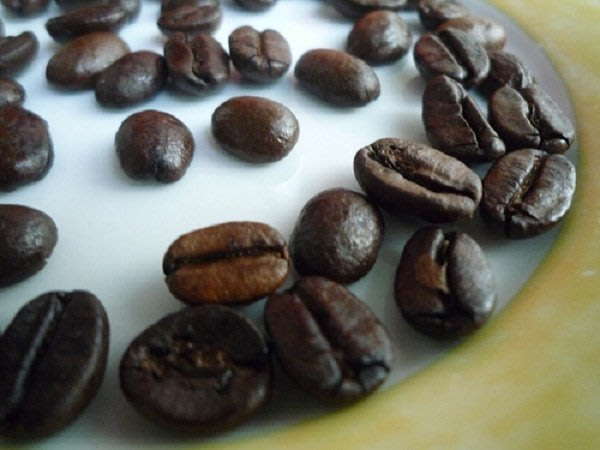 嚴選特級烘培咖啡豆 (500g ) GOOGSELECT COFFEE 500g