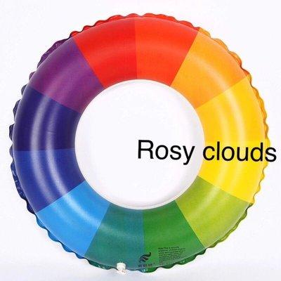 Fb:Rosy Clouds專業代購 加厚款 六色泳圈 草莓甜圈 天鵝 紅鶴