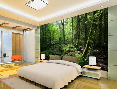 客製化壁貼 店面保障 編號F-721 叢林樹木 壁紙 牆貼 牆紙 壁畫 背景牆 星瑞 shing ruei