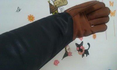 防動物咬傷 手套 防咬手套 防咬傷手套 訓練狗專用手套 [ 好好防護 ]