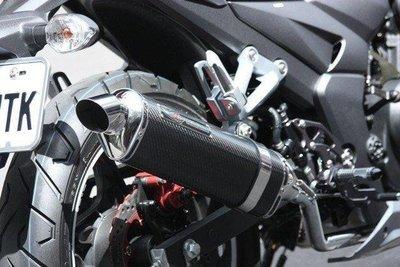 誠一機研 武田 WRRP SP 碳纖維水滴管 排氣管 MY 150 125 雲豹 200 AIR 灰狼 獵豹 改裝