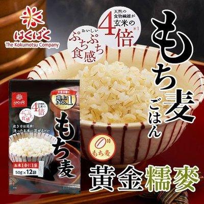 日本 Hakubaku 黃金糯麥 600g 大麥 穀物飯 米 糯麥米飯 食物纖維 膳食纖維【SA Girl】