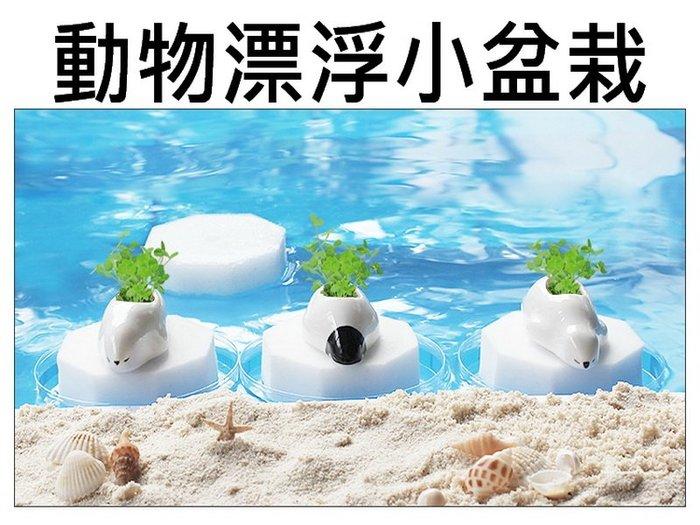 動物小盆栽 漂浮小盆栽 北極熊 企鵝 創意盆栽 自動吸水 辦公室小物 桌上擺飾