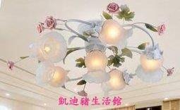 【凱迪豬生活館】臥室燈浪漫吸頂客廳燈創意溫馨燈飾燈具吸頂燈KTZ-201016