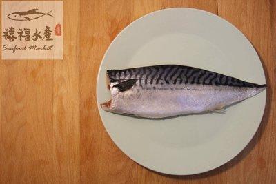 【禧福水產】挪威鯖魚片◇$特價600元/200g±10%/10片◇最低價 肉質肥美/cp值超高 餐廳團購可批發