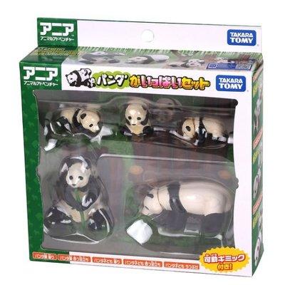 【阿LIN】39995A 熊貓家族禮盒組 多美動物園 模型 教學 知識 TAKARA TOMY ST安全玩具