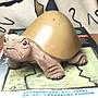福氣龜 平安龜 石龜 陳純輝老師 擺飾 鐵丸石 黑石膽 龜甲石 藝品