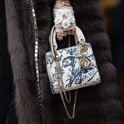 DIOR mini Lady Dior 叢林動物派對戴妃包