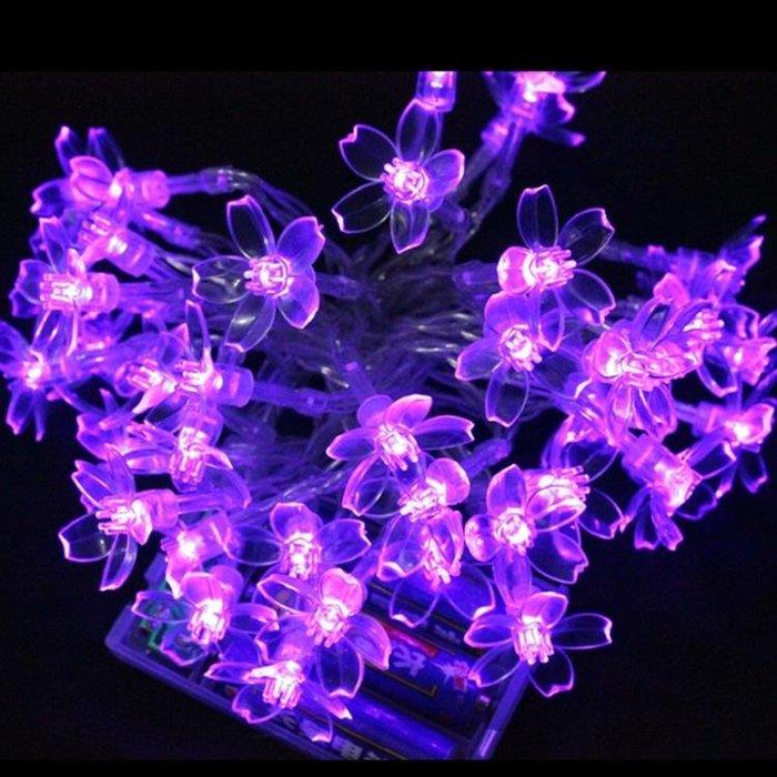錢康LED星星彩燈閃燈梅花電池燈花朵串燈抖音同款神器裝飾滿天星