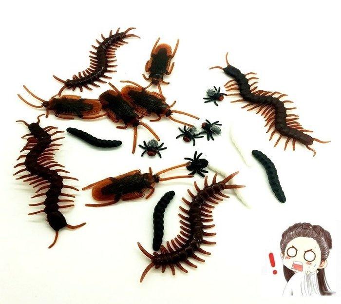 吉米生活館 5支仿真蟑螂 假蟑螂 塑膠蟑螂 惡作劇整人蟑螂 假壁虎 假小強 假蝎子 假蒼蠅 假蜈蚣 搞怪整人玩具