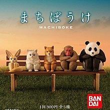 Bandai 扭蛋 Waiting Animals 等待的動物們 全套5款